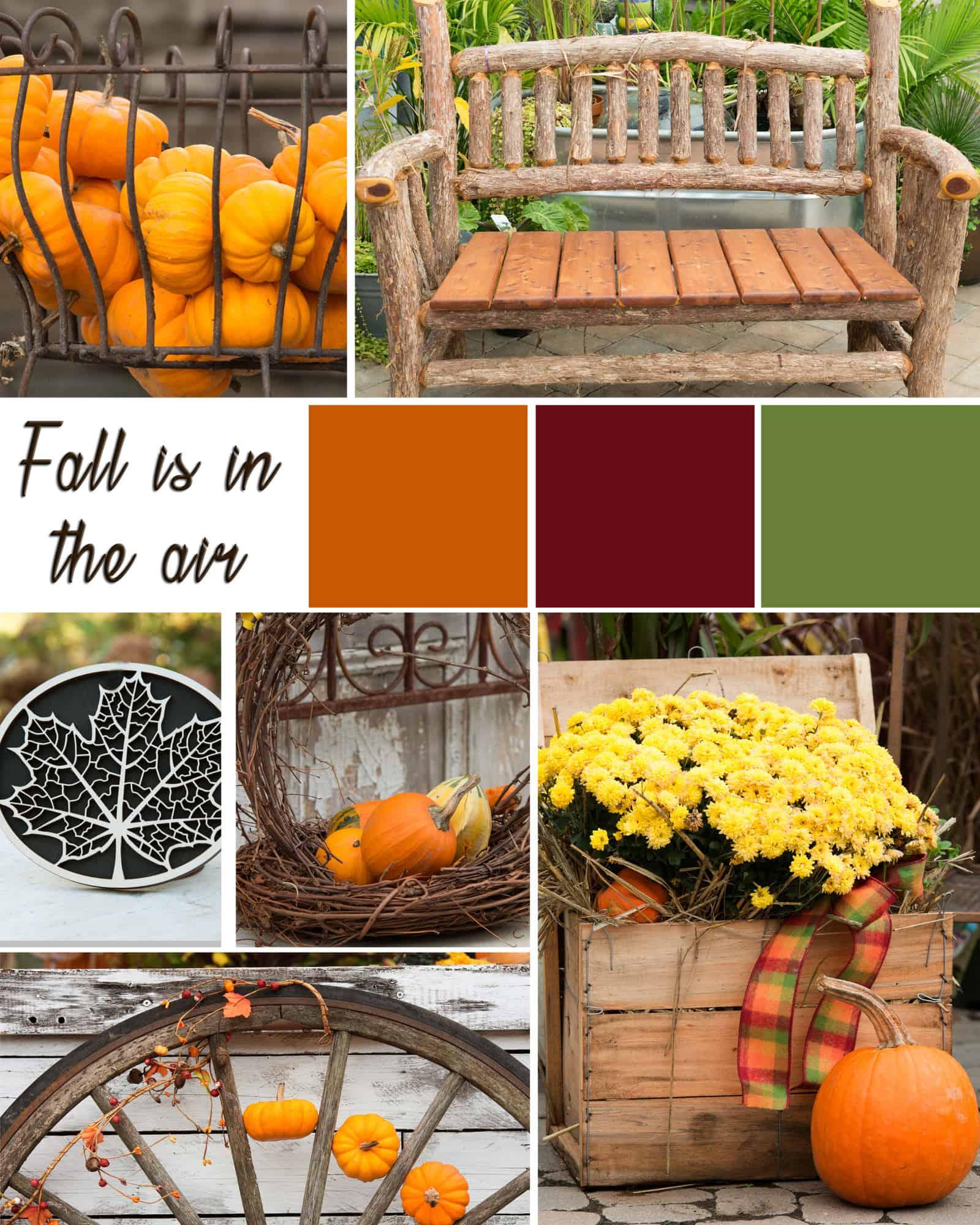 Fall Mood Board Calgo Gardens